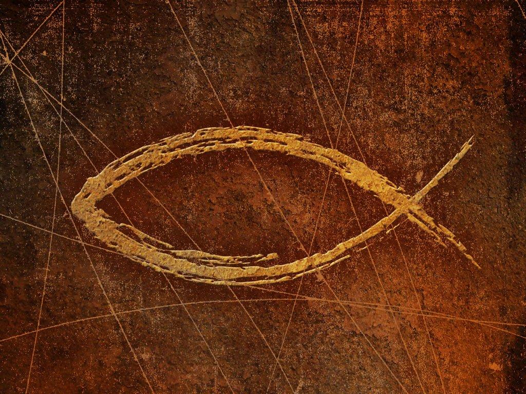 Flying Fish Christian Reformed Church