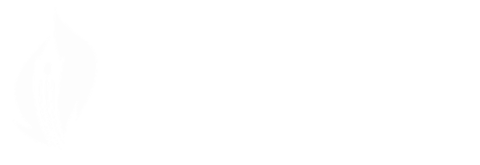 Centre for Public Dialogue